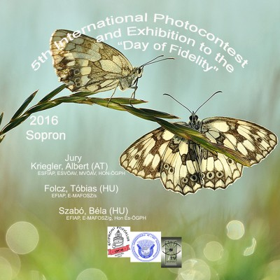 5th International Photocontest and Exhibition to the Day of Fidelity pályázat képe